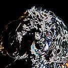 Digital Art #2  by Heather Friedman