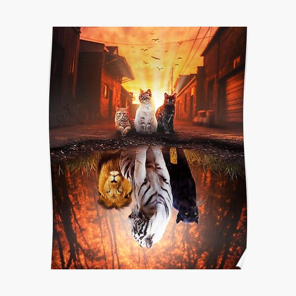 Cat vs Tiger - Cat is Tiger  Reflection Poster