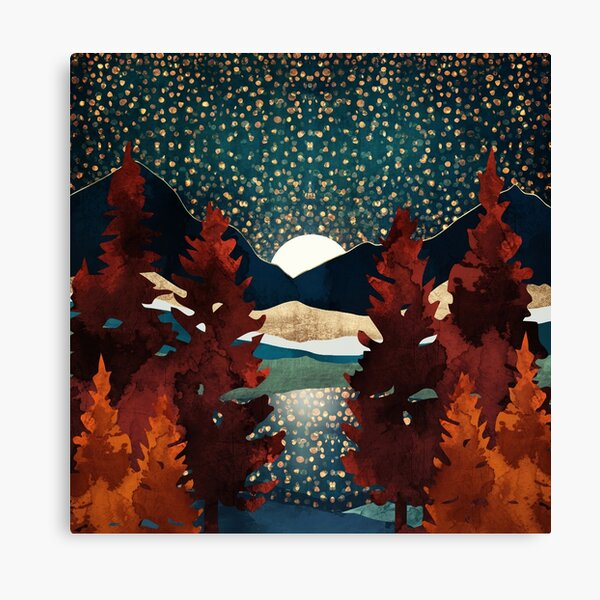 Star Sky Reflection Canvas Print