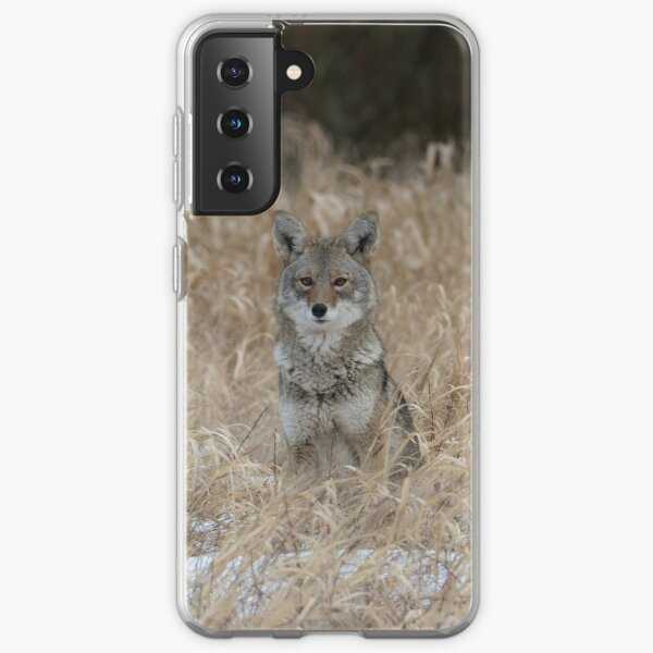 The Little One coyote Guemes Island Samsung Galaxy Soft Case