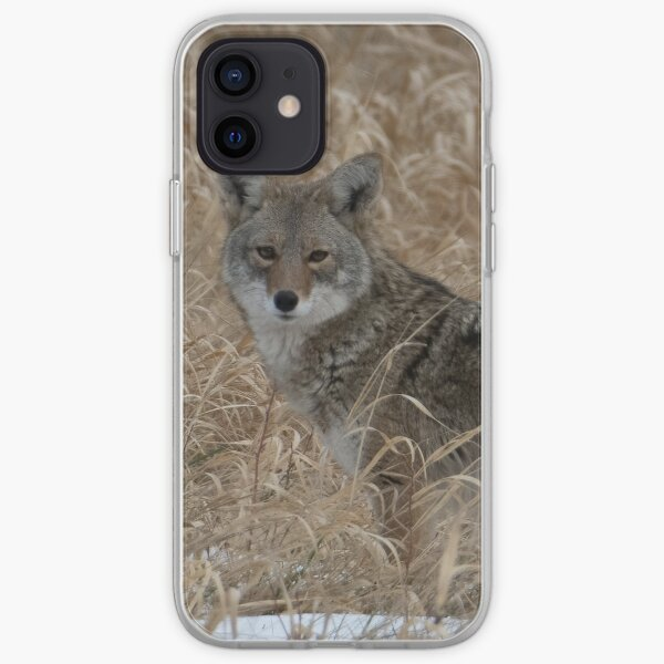 The Little One Coyote Guemes iPhone Soft Case