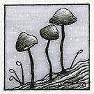Tiny Mushrooms by Rayne Karfonta