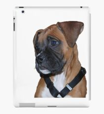 Gracie iPad Case/Skin