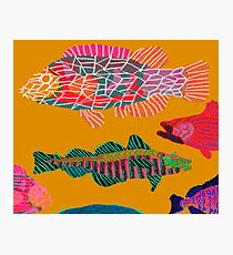 Colorful Abstract Fish Art Drawstring Bag in Yellow and Black  Photographic Print