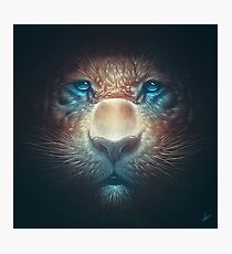 Red Tiger Photographic Print