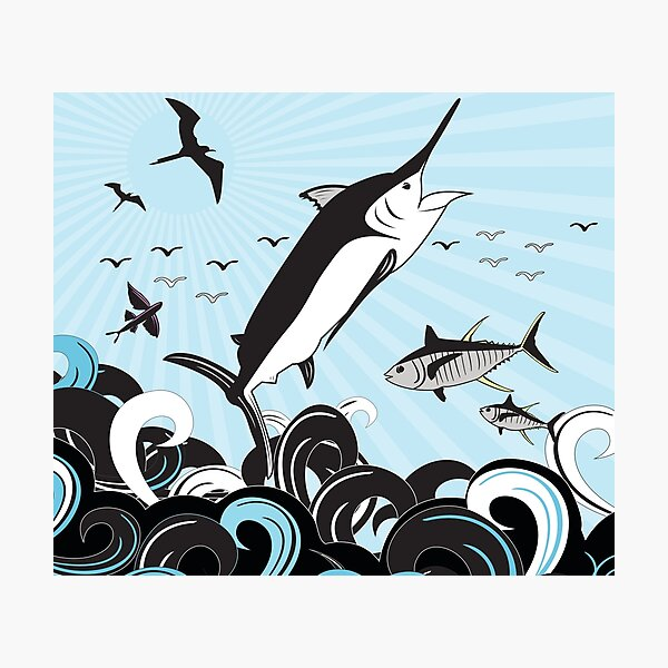 Marlin Scene Photographic Print