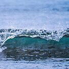 Surfs Up by Candy Jubb