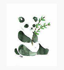 cute ink panda Photographic Print