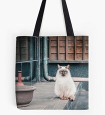 Cat, Aso, Temple Tote Bag