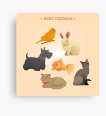 Home Pets Set: Carrot, Dog, Rabbit, Fish and Cats. Vector illustration Canvas Print