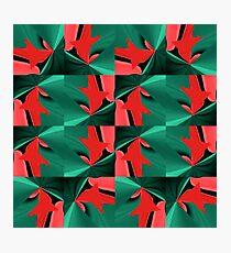 Geometric Lux ZC Photographic Print