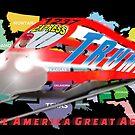 Trump Train USA by ayemagine