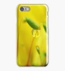 Springlike  iPhone Case/Skin