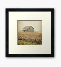 Lost in the prairie Framed Print