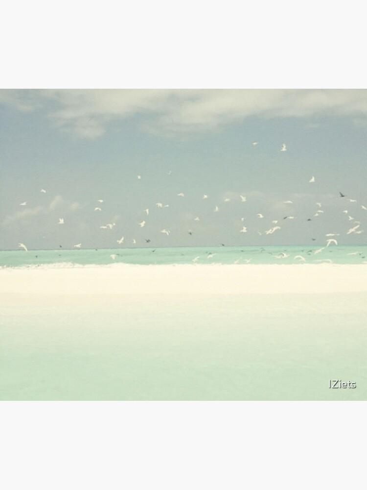 Blue Skies Birds Beach And Ocean Seashore Landscape by IZiets