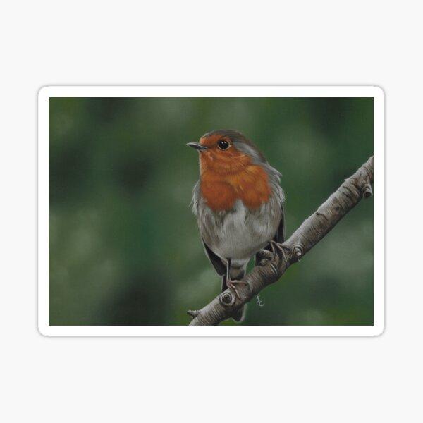 Little Robin Redbreast Sticker