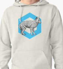Fox Shine Pullover Hoodie