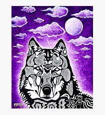 Funq Wolf Photographic Print