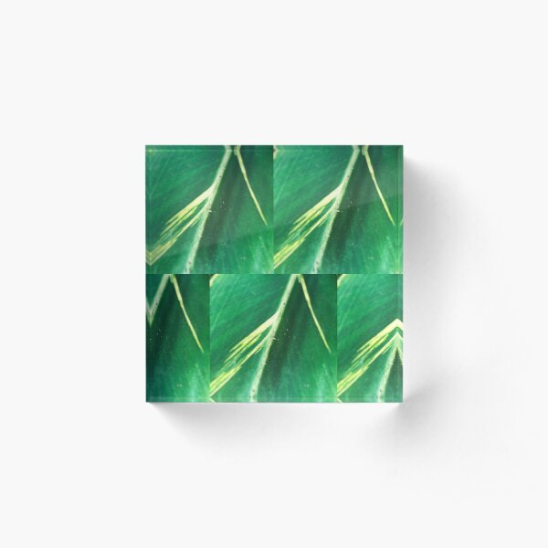 Modern Leaf Tiles Acrylic Block