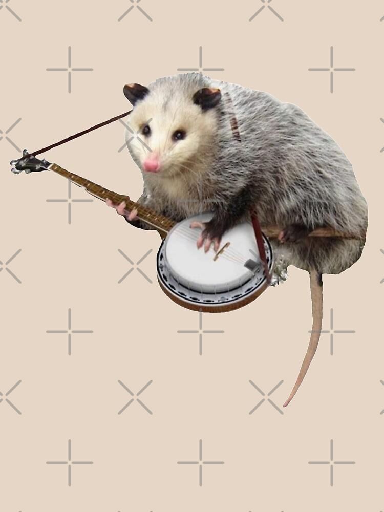 Opossum Playing Banjo by TEE-ST0RY