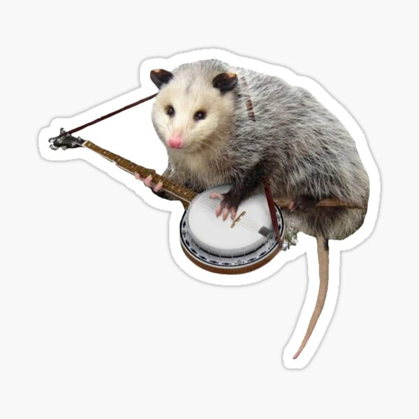 Opossum Playing Banjo Sticker