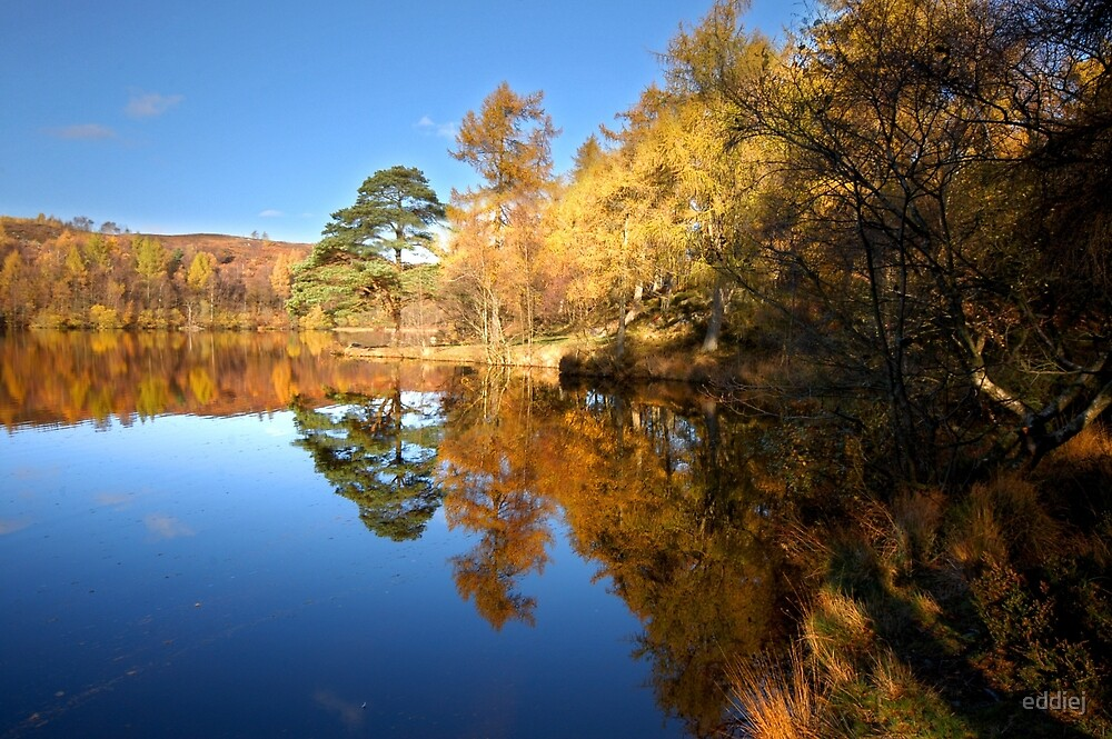 Autumn reflections on Finsthwaite tarn by eddiej