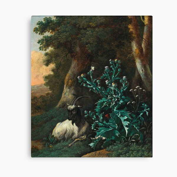 Abraham Begeyn (c. Leiden 1637–1697 Berlin) -  A wooded landscape with a goat and thistles  Canvas Print