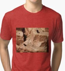 California Condor in the Wild  06 - Perched Tri-blend T-Shirt