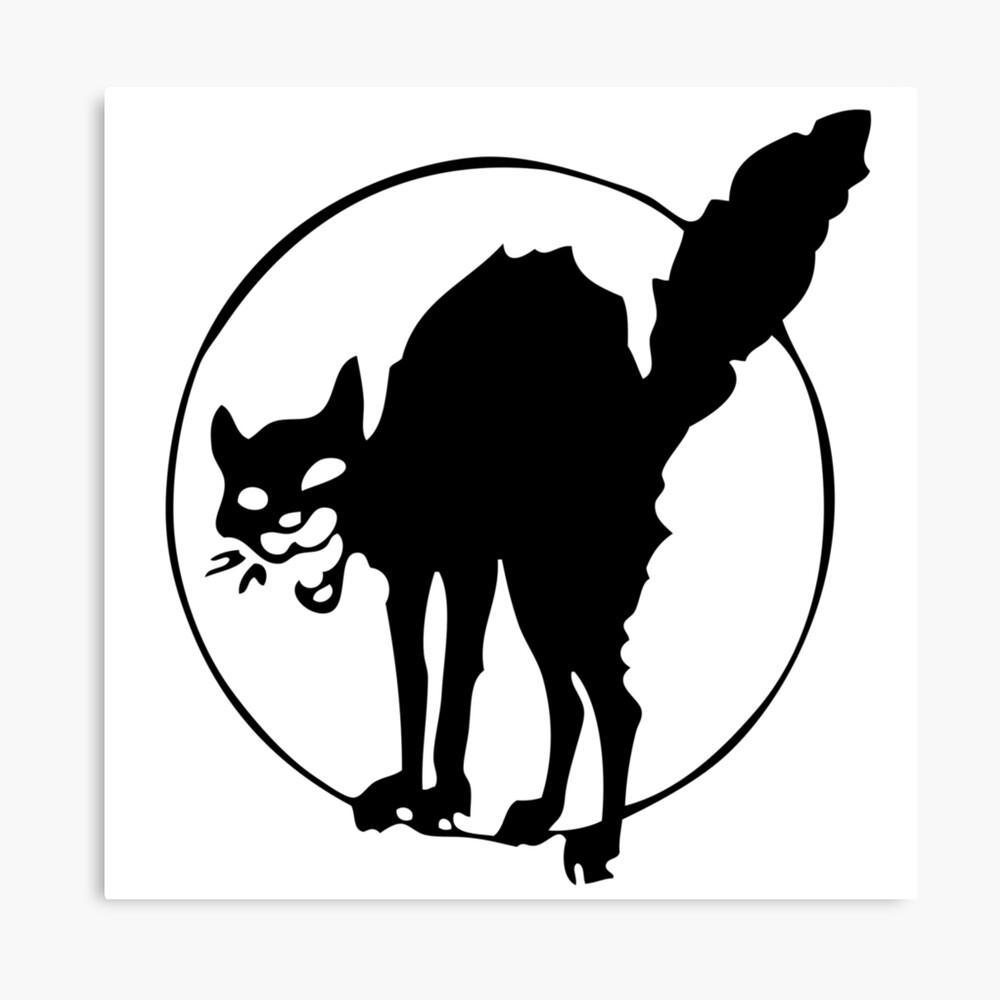 Anarchist black cat Canvas Print