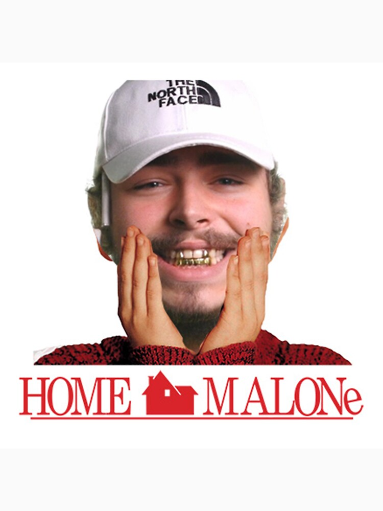 The 15 Best Post Malone Memes To Have Graced The Internet