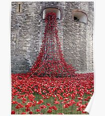 A Cascade Of Poppies At The Tower Of London Poster