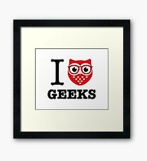 I Owl Geeks (love heart) Framed Print