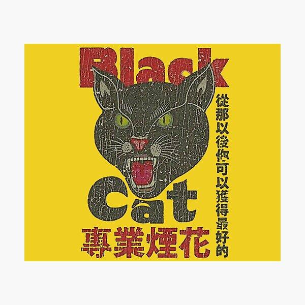 vintage 1942 black cat Photographic Print
