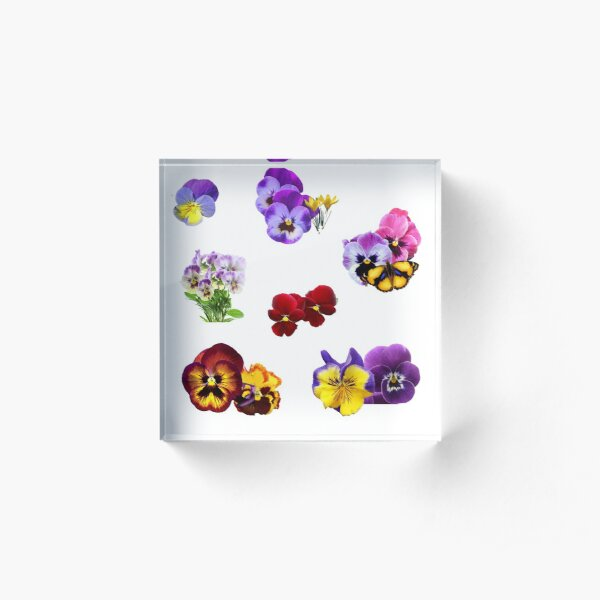 Colorful Pansies Garden Collage with Butterfly Acrylic Block