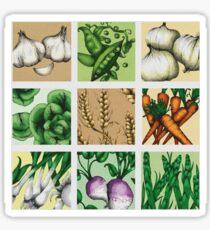 Farmers Market Montage Sticker