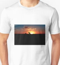 Kangaroos at Sunset T-Shirt