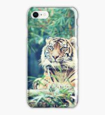 tiger... iPhone Case/Skin