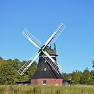 Dutch Windmill, German Windmill, Prussian Windmill. Windmills have been dotted all over, from Holland to Estonia by Remo Kurka