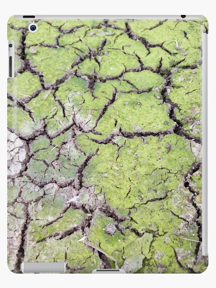 environmental concept, Water shortage and drought Dry cracked mud by PhotoStock-Isra