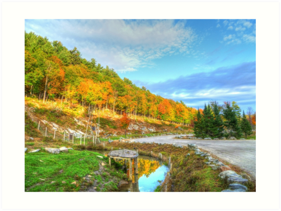 Beautiful Autumn Day by Vicki Spindler (VHS Photography)