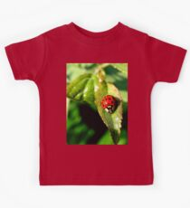 Little bitty lady bug  Kids Clothes