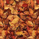 Autumn Blanket by HoremWeb