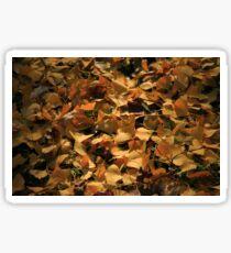 Ginkgo Biloba Leaves in Autumn Sticker