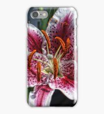 Stargazier Lilly iPhone Case/Skin
