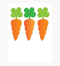 Three carrots orange vegetables Photographic Print