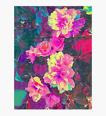 Bright Flowers Photographic Print