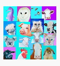 Animal paintings collage for nursery wall Photographic Print