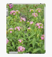 Garden Up North    Pentax Digital Camera 16mp X-5 Series iPad Case/Skin