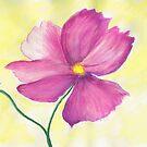 One single cosmos flower by Elizabeth Kendall
