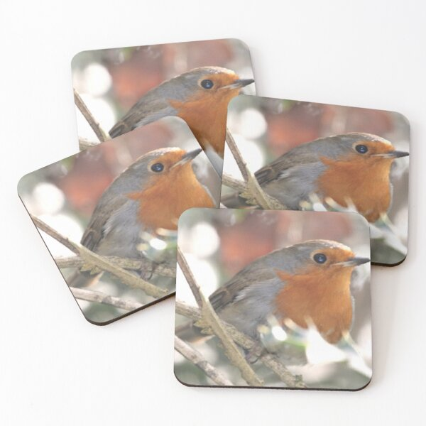 Red Robin Coasters (Set of 4)